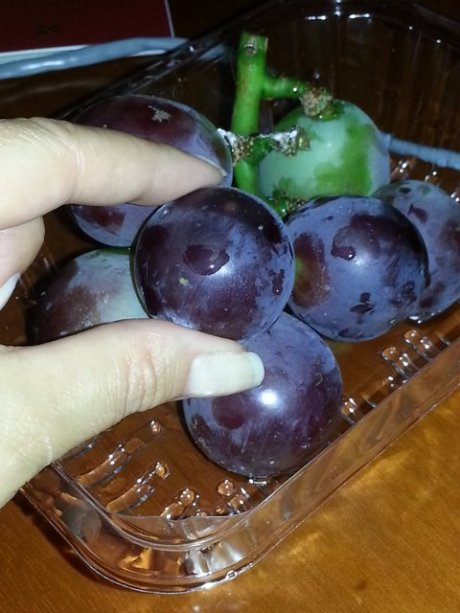 My last day in Shenyang, have you ever seen grapes that big???